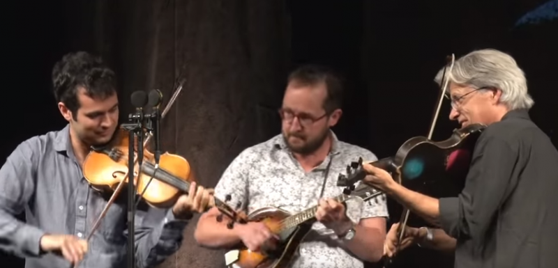 darol anger on fiddle