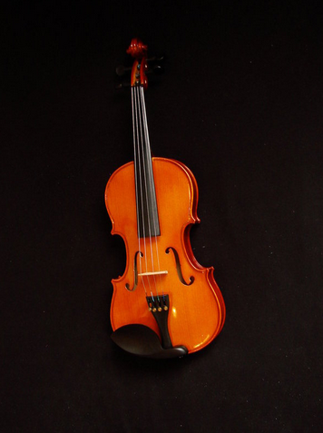 5 things to know before learning the violin artistworks